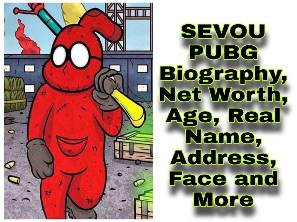 Sevou PUBG Wiki